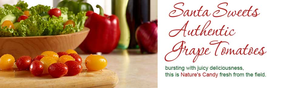 Santa Sweest Authentic Grape Tomatoes bursting with juicy deliciousness, this is Nature's Candy fresh from the field.